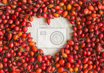Dogrose Beeren in Form von Herzen auf Baumwollstoff