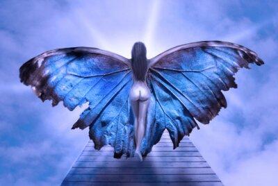 Bild donna con ali di farafalla