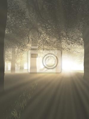 Drache in einem nebligen Wald mit den Strahlen der hellen Sonnenlicht