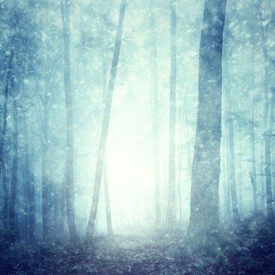 Dreamy Schneefall in magischen blauen nebligen Wald. Schöne Weihnachten und Neujahr Urlaub Winter schneebedeckten Waldlandschaft. Schwere Schneefälle in Magie nebligen Wald.
