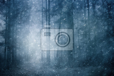 Dreamy snowfall in dark blue colored foggy forest. Beautiful winter snowy forest landscape. Heavy snowfall in magic foggy forest.