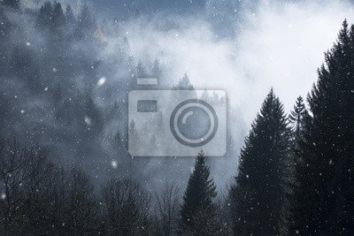 Dreamy snowfall in foggy and cloudy forest. Beautiful winter snowy woodland.