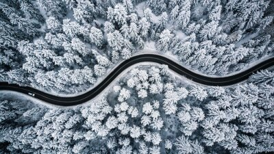 Bild Driving in forest after snowfall, aerial drone view