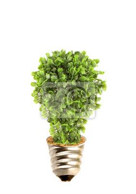 Eco Baum Glühbirne