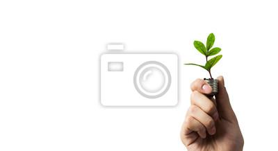 Bild Eco green energy. Mixed media