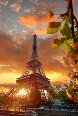 Bild Eiffel Tower during beautiful  spring morning in Paris, France