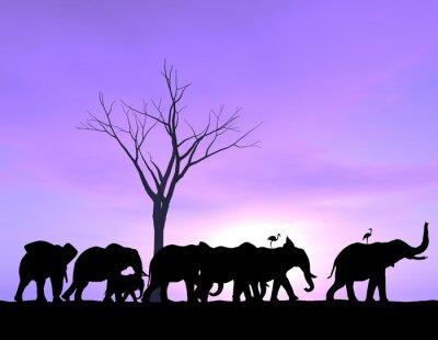 Bild Ein Elefant führt der Weg, wie die anderen folgen mit einem purpurroten Sonnenuntergang oder Sonnenaufgang.