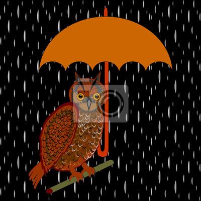 Eine Eule mit Regenschirm in der regen