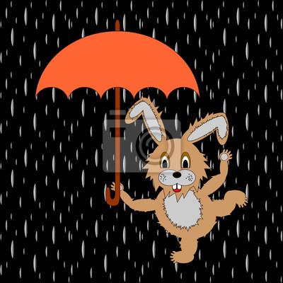 Eine lustige Kaninchen mit Regenschirm in der regen