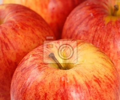 Apfel reife Breiten