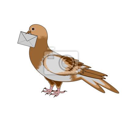 Eine Taube mit einem Buchstaben auf einem weißen Hintergrund