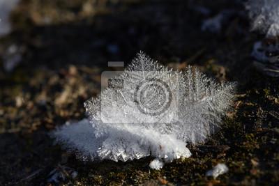 Eiskristalle Großansicht