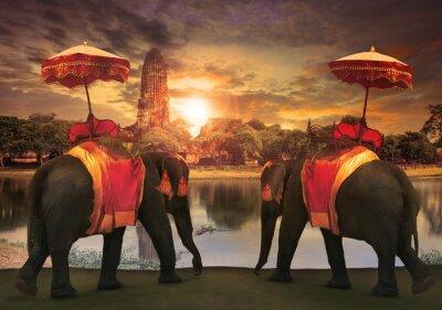 Bild elephant dressing with thai kingdom tradition accessories standi