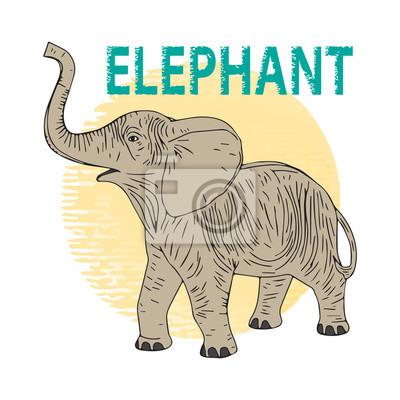 Elephant Kalb. Vektor-Illustration, Symbol, Element für Design oder Mode-Druck.