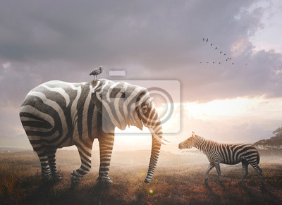Bild Elephant with zebra stripes