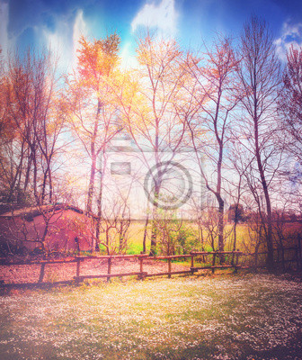 Enchanted Land Serie