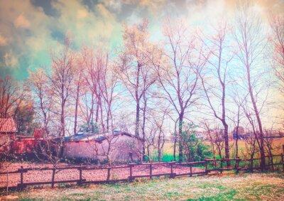 Bild Enchanted Land Serie