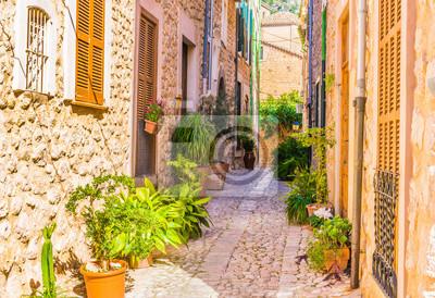 Bild Enge Gasse Mediterran Dorf Gebäude Mit Topfpflanzen Dekoration
