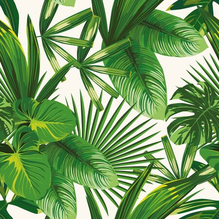 Bild Exotic tropical natural green leaves vector composition on white background. Beach seamless pattern wallpaper