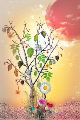 Fairy Baum im Sonnenuntergang