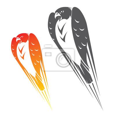 Falcon im Flug