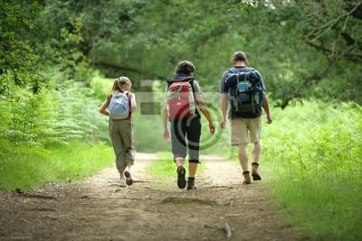 Bild famille en randonnée de dos