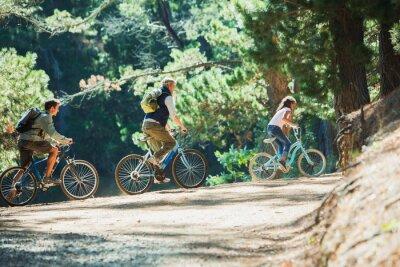 Bild Family bike ridings in woods