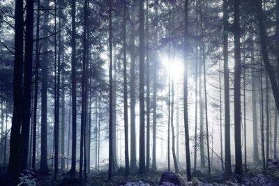 Fantasie dunkelblau nebeligen Wald Baum Landschaft.