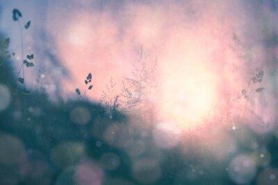 Bild Fantasie Sonnenuntergang bokeh unscharf Wiese Hintergrund