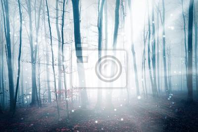 Fantasielichtstrahl in der nebeligen Waldlandschaft mit abstraktem Leuchtkäfer bokeh. Farbfiltereffekt verwendet.