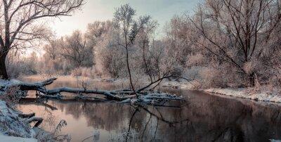 Bild Fantastische Winterlandschaft