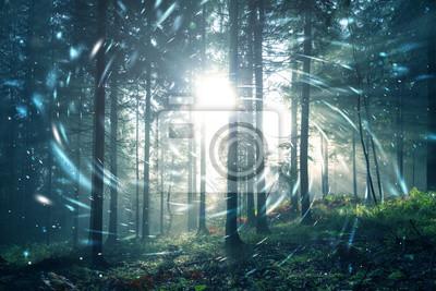 Fantasy blau grün nebligen Wald Märchen mit Kreis Glühwürmchen Bokeh Hintergrund. Farbfilter-Effekt verwendet.