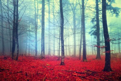 Fantasy Herbst Wald Szene