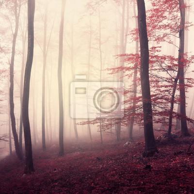 Fantasy marsala color woodland