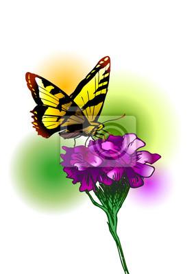 Farbige Darstellung einen Schmetterling und Blume. Vektor-Illustration
