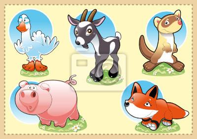 Farm Baby Animals