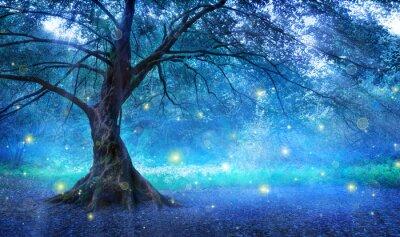 Bild Fee Baum Im Mystischen Wald