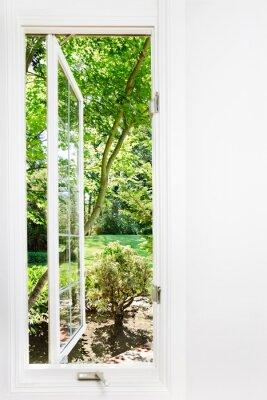 Bild Fenster zum sonnigen, Sommergarten; Fokus auf Bäumen und im Freien