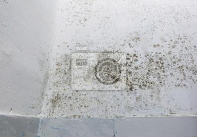 Feuchte Flecken Auf Einer Wand Uber Sockelleiste Leinwandbilder