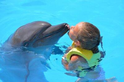 Bild fille embrassant  un dauphin