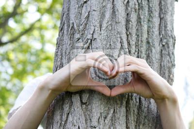 Fingers gebildet in der Form eines Herzens auf einem Baumstamm