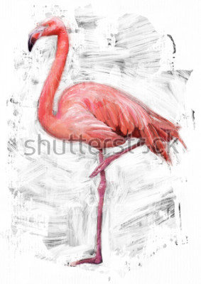 Bild Flamingovogelskizze / Ölfarbmalerei