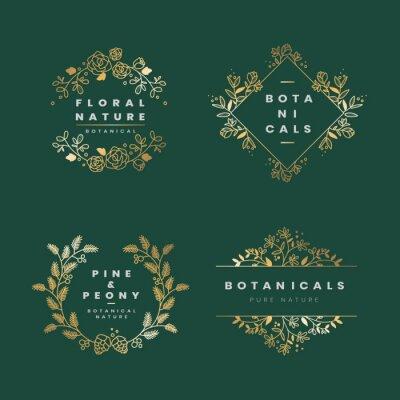 Bild Floral botanical frame collection