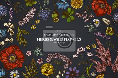Bild Floral design on dark background with shepherd's purse, heather, fern, wild garlic, clover, globethistle, gentiana, astilbe, craspedia, lagurus, black caraway, chamomile, dandelion, poppy flower, lily