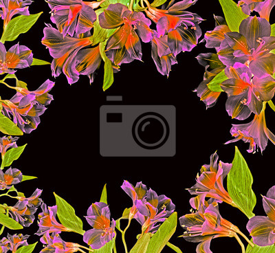 Bild floral frame