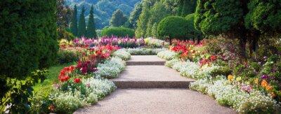 Bild Flower Garden