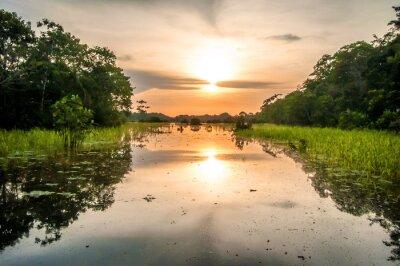 Bild Fluss im Amazonas-Regenwald in der Dämmerung, Peru, Südamerika