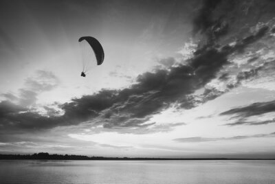Flying above the sea. Black and white