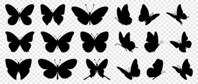 Bild Flying butterflies silhouette black set isolated on transparent background