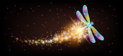 Bild Flying delightful dragonfly with sparkle and blazing trail flying in night sky among shiny glowing stars in cosmic space. Animal protection day concept.